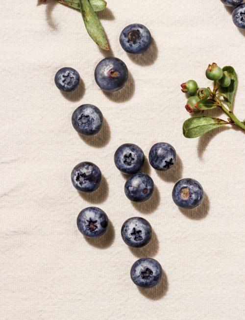 coyo_blueberries_7390_bexported
